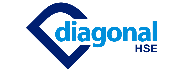 DIAGONAL-HSE-LOGO-2.png